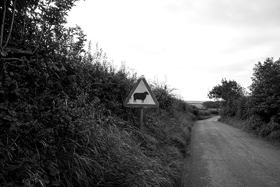 Wales - Winding roads II